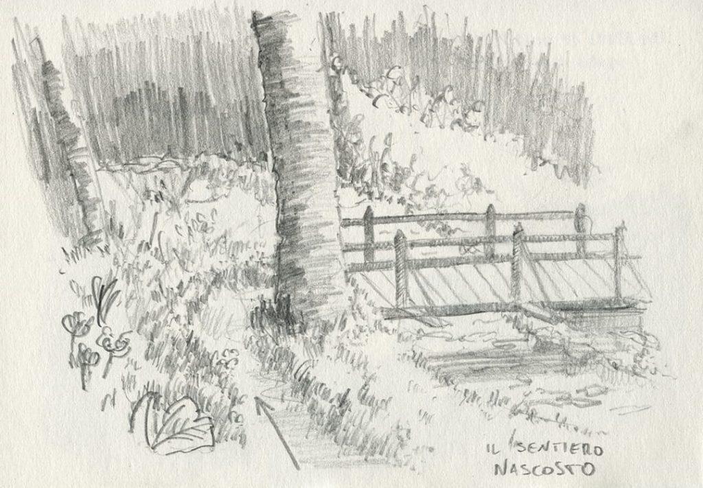 trekking cuneaz, disegno un bivio nascosto di un sentiero che porta nel bosco